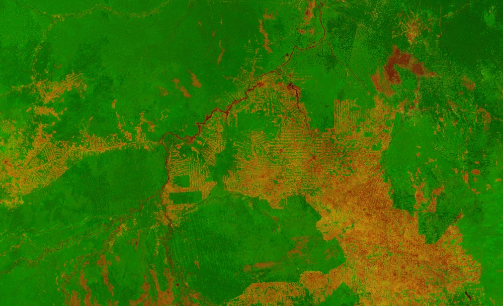 Proba-V image of the area around Porto Velho, western Brazil. Image released 2014 Credit: ESA/VITO