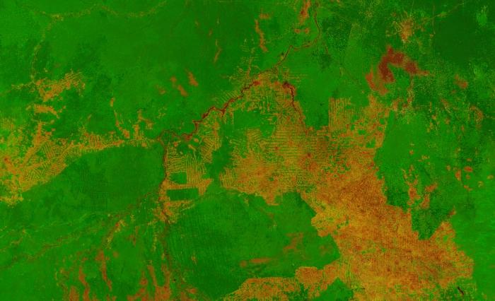 Proba-V image of the area around Porto Velho, western Brazil. Image released 2014 Credit: ESA/VITO
